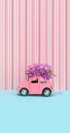 Pin on Screen wallpaper Floral Wallpaper Iphone, Full Hd Wallpaper, Cute Wallpaper Backgrounds, Pretty Wallpapers, Tumblr Wallpaper, Flower Backgrounds, Colorful Wallpaper, Flower Wallpaper, Screen Wallpaper