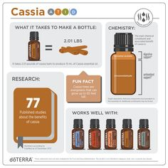 Did you know that Cassia essential oil promotes a healthy digestion? What is your favorite tip using cassia? Tell me in the comments! Cassia Essential Oil, Essential Oils 101, Essential Oil Diffuser, Essential Oil Blends, Doterra Oils, Perfume, Diffuser Blends, Pure Products, Doterra Essential Oils
