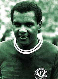 #Luis Pereira, #Palmeiras
