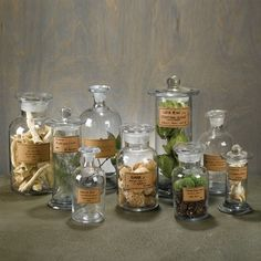 Set of 9 Apothecary Jars by Burke Decor ~ sucker for glass jars! (especially apothecary jars! Antique Bottles, Bottles And Jars, Glass Bottles, Mason Jars, Perfume Bottles, Vintage Bottles, Vintage Labels, Antique Glass, Apothecary Jars Bathroom