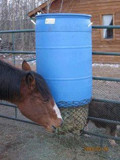 The barrel holds a bale of hay. It stays dry when the lid is screwed on and the net allows for it to be slowly pulled down when the horses feed.