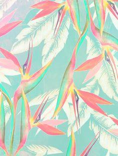 My Summer Color Palette :: Vintage Tropical Motif Tropical, Tropical Colors, Tropical Pattern, Summer Colors, Tropical Prints, Tropical Design, Tropical Birds, Pattern Vegetal, Pattern Texture