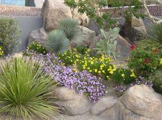 Image detail for -Desert Landscape