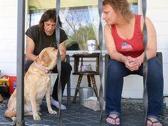 Dog Finds Newborn Baby on Porch in Michigan