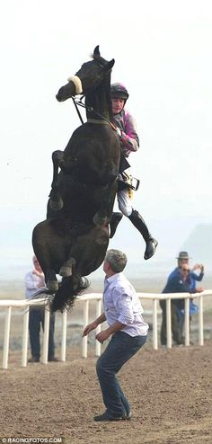 Horse rears up as jockey tries to mount it during only beach meet in British Isles | Mail Online