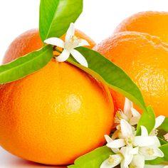 12 Amazing Neroli Essential Oil Uses (
