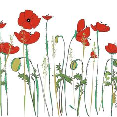 Poppies iDraw1 white #poppies #idraw #ipad2 #ipadart #bridportlife #flowers #suzannemclementsartwork
