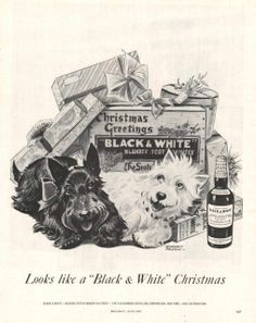 1956 Scottie and Westie dogs Black & White Scotch print ad Christmas-if I could, these would be our family pets. Smart, cute and compact!