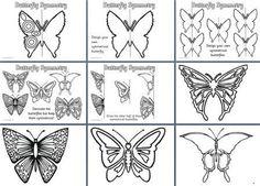 Seasonal Symmerty Fun!  Butterflies