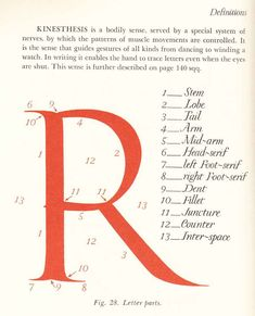 Father Edward Catich - the origin of the serif.....I am lovin the fab curves of this R