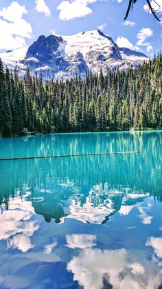 Joffre Lakes Provincial Park near Pemberton BC Canada [OC] East Coast Canada, East Coast Usa, Beautiful Places To Live, What A Beautiful World, Vancouver Travel, Vancouver Island, Wallpaper Canada, Joffre Lake, Canada Mountains