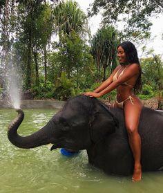 She ridin' an elepha...