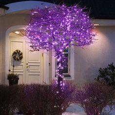Konstsmide 3631-450 Purple 120 Multi-Function LED Tree Lights | Internet Gardener