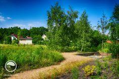 #landscape #architecture #garden #meadow #resting #place #fireplace Meadow Garden, Golf Courses, Country Roads, Landscape Architecture, Places, Gardening, Atelier, Lawn And Garden, Landscape Design