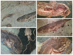 mosaici a soggetto marino Roma, Centrale Montemartini