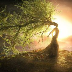 Mother Earth embracing the morning sun. I believe this represents well of them putting all of their trust into mother nature to repopulate the earth. Fantasy Kunst, Fantasy Art, Nature Spirits, Gods And Goddesses, Tree Art, Tree Of Life Artwork, Fantasy World, Mythical Creatures, Belle Photo