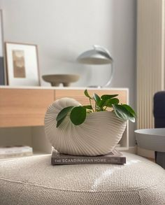 Love this beautiful shot by @scandiandme 👈🏻 Featuring our favourite Ferm Living Shell Pot, available online 💫 . #interiordesign… Green Plants, Planter Pots, Shell, Interior Design, Bedroom, Beautiful, Nest Design, Home Interior Design, Interior Designing