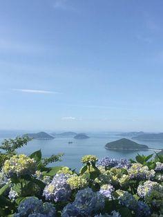 A pretty sight at Mt. Shiude, Mitoyo, Kagawa, Japan.