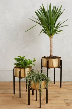 If you felt like you wanted a little bit more glam in the space you could do a metal finish on your plant containers. Otherwise I woudl stick to neutral