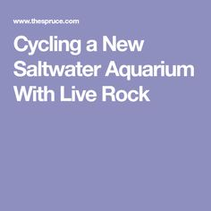 Cycling a New Saltwater Aquarium With Live Rock