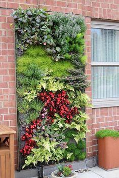 Herb garden planter ideas for diy wall garden luxury diy vertical herb garden and planter Vertical Garden Design, Herb Garden Design, Backyard Garden Design, Diy Garden, Garden Projects, Vertical Gardens, Backyard Ideas, Fence Ideas, Pallet Ideas