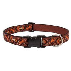 LUPINE DOWN UNDER MEDIUM/LARGE DOG COLLAR 3/4 INCH WIDE - BD Luxe Dogs & Supplies