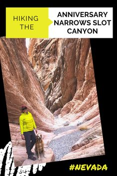 Hiking the Anniversary Narrows Slot Canyon, Nevada - Girl on a Hike Best Tracking App, Lake Mead, Valley Of Fire, Slot Canyon, Dogs And Kids, Windy Day, Camping With Kids, He Is Able
