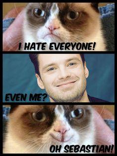 Nobody can hate Sebastian Stan