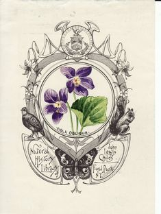 hand painted bookplates used by John Lewis Childs (artist unknown)