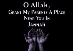 Hadith Quotes, Allah Quotes, Muslim Quotes, Hindi Quotes, Islamic Inspirational Quotes, Islamic Quotes, Advice Quotes, Best Quotes, Quran Book