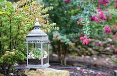 Lanterns with Dirt and Flower Idea