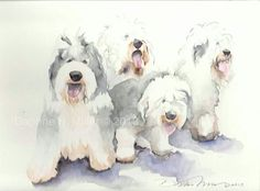 Oes painting Old English Sheepdog Puppy, Dog Frames, Cute Animal Illustration, Bearded Collie, Watercolor Animals, Watercolour, Dogs And Puppies, Doggies, Animal Paintings