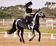 Matching Horse and Rider Skeleton costumes