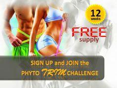 Rizanoia: Phyto Trim 12 Weeks Weight Loss Challenge