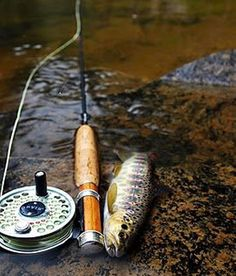 Love these trout fishing lures ! Trout Fishing Tips, Fishing Lures, Fishing Tricks, Walleye Fishing, Fishing Rods, Carp Fishing, Gone Fishing, Fishing Tackle, Fishing Photos