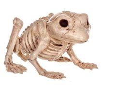 Crazy Bonez Skeleton Frog Halloween Prop Decoration Dead Bones Haunted
