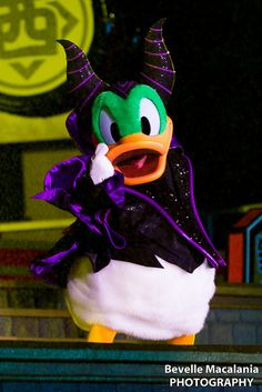 Donald Duck as Malificent. too freaking cute.