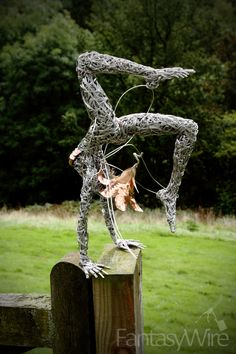 Goosebumps, amazing wire sculpture artist Robin Wight.  check his website out www.fantasywire.co.uk