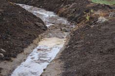 Su kirliliği, göl, nehir, okyanus, deniz ve yeraltı suları gibi su barındıran havzalarda görülen kirliliğe verilen genel addır. Her çeşit su kirliliği, kirliliğin bulunduğu havzanın çevresinde veya içinde yaşayan tüm canlılara zarar verdiği gibi, çeşitli türlerin ve biyolojik toplulukların yok olmasına ortam hazırlar. Su kirliliği, içinde zararlı bileşenler barındıran atık suların, yeterli arıtım işleminden geçirilmeksizin havzalara boşaltılmasıyla meydana gelir.