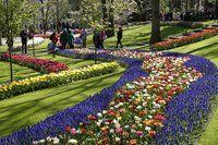 Flowerfields and Keukenhof