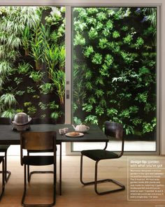 Vertical garden between houses. Would love this outside  our Kitchen window.