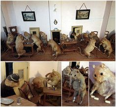 Walter Potter's collection of anthropomorphic taxidermy included cigar-smoking squirrels, athletic toads, and a kittens' tea party.