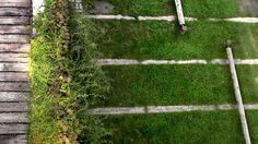 isabel-bennasar-felix-landscape-architecture-esplugues-llobregat-park-13 « Landscape Architecture Works | Landezine