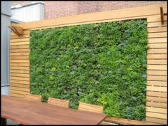 Google Image Result for http://fundesignideas.com/fun/wp-content/uploads/2011/07/vertical-garden-wooden-frame.jpg
