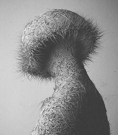 Hairy Digital Portraits-4