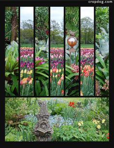 I used the same photo for every other strip on the pattern. 8.5x11 Photo collage created with a free account on Cropdog.com