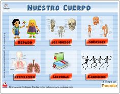 Awesome game site, many themes. Elementary Spanish, Spanish Classroom, Teaching Spanish, School Teacher, School Fun, Country Day School, Dual Language Classroom, Education Sites, Spanish Immersion
