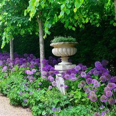 Flower landscape design tips Purple Garden, Colorful Garden, Shade Garden, Flower Landscape, Landscape Design, Back Gardens, Outdoor Gardens, Allium Flowers, Flowers Garden
