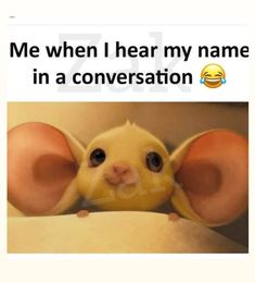 Really Funny Pictures, Really Funny Memes, Crazy Funny Memes, Funny Video Memes, Funny Relatable Memes, Wtf Funny, Funny Facts, Funny Cartoon Memes, Funny School Jokes