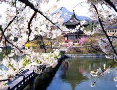 กรุงโซล ประเทศเกาหลี ใน โซล